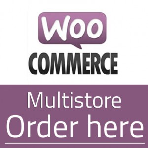 woocommerce-multistore-order