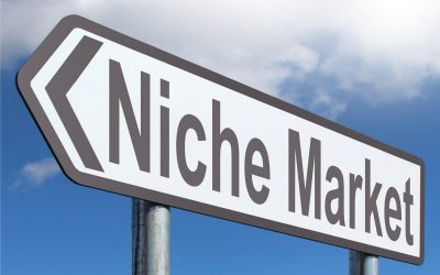 How to Find the Perfect Product Niche for Your Store in 2018
